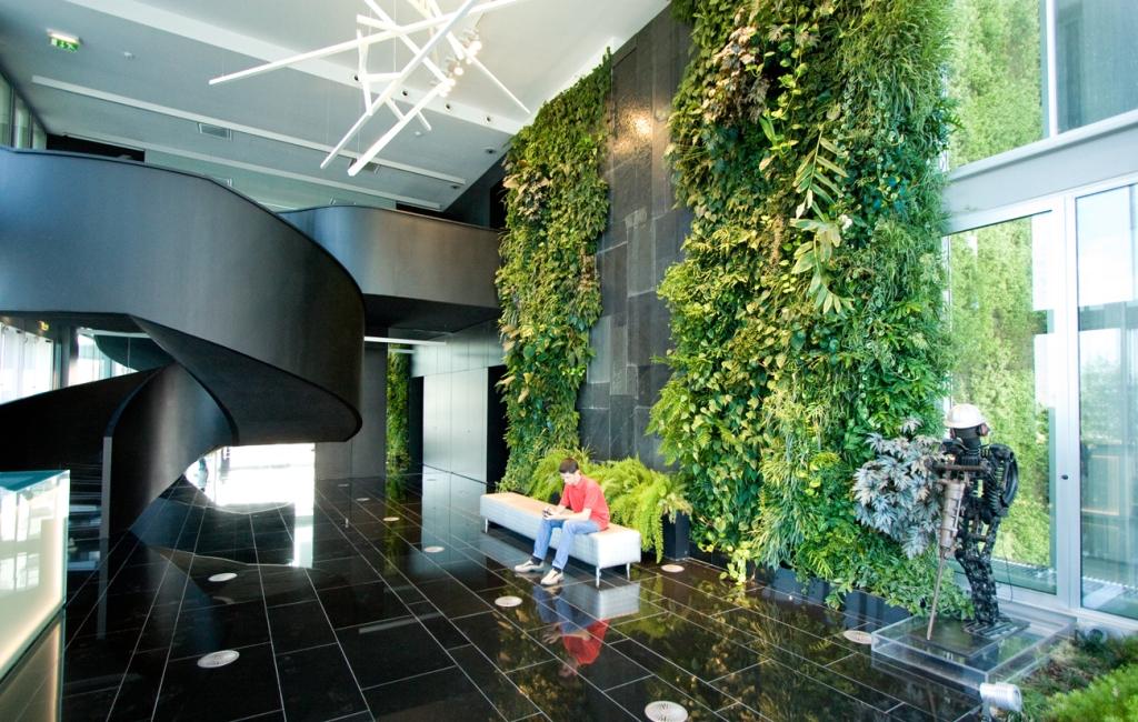 Озеленение помещений, офисов, зимние сады в домах