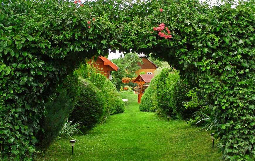 Озеленение и благоустройство территории в Мытищах